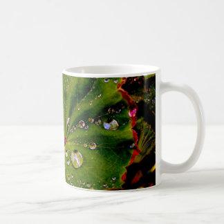 Garden, Nature Coffee Mug