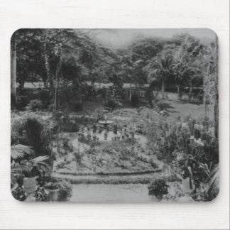 Garden of a Suburban Villa Mouse Pad