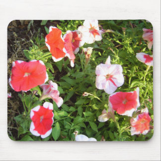 Garden of Colors CricketDiane Art & Photography Mouse Pad