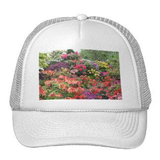 Garden of Delights Hats
