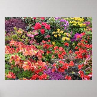 Garden of Delights Poster