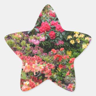 Garden of Delights Star Sticker