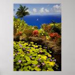 Garden of Eden - Maui - Hawaii Poster