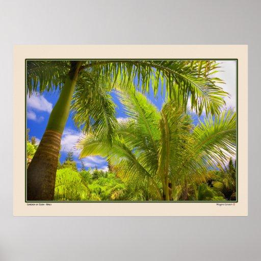Garden of Eden - Palms - Maui Hawaii Poster