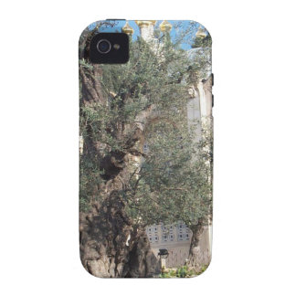 Garden Of Gethsemane iPhone 4 Cases