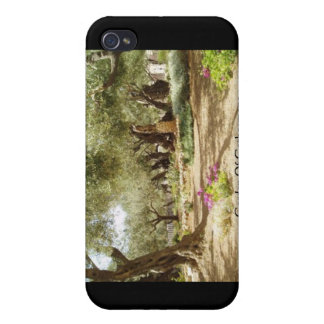 Garden Of Gethsemane Christian Gifts Cards iPhone 4 Cases