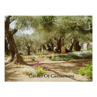 Garden Of Gethsemane Christianity Posters