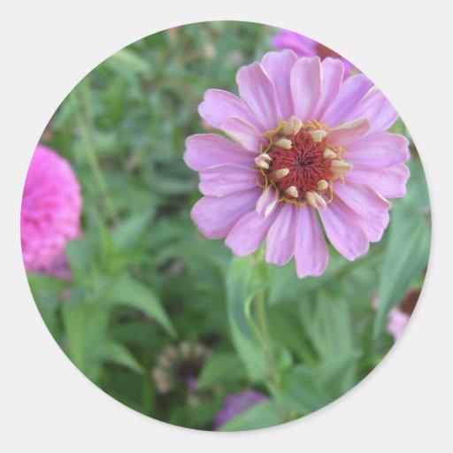 Garden of Purple Stickers