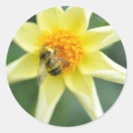 Garden of Rain - Bee on Chopper Round Sticker