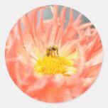 Garden of Rain - Bee Sticker