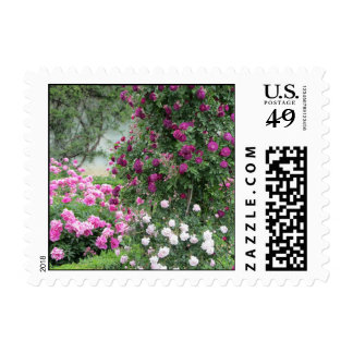 Garden of Roses Postage