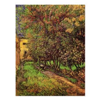 Garden of Saint-Paul Hospital, Vincent van Gogh Postcard