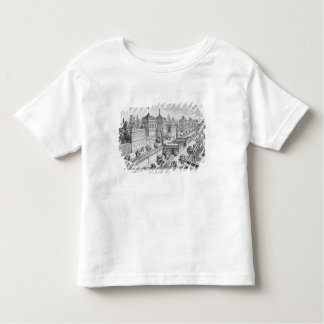 Garden of the Duke of Parma on the Palatine Hill, Shirt