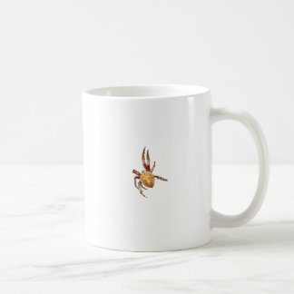 Garden Orb Weaver Spider Coffee Mug