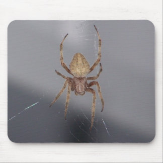 Garden Orb Weaver Spider Mouse Pad