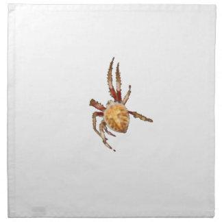 Garden Orb Weaver Spider Printed Napkins
