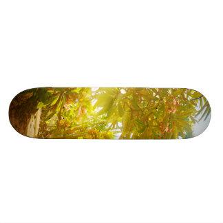 Garden Path Skateboard