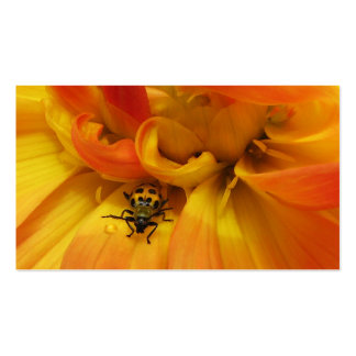 Garden Pest Control Double-Sided Standard Business Cards (Pack Of 100)