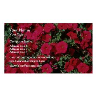 Garden Petunia Petunia Hybrida flowers Business Card Template