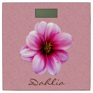 Garden Pink Dahlia Flower any Text