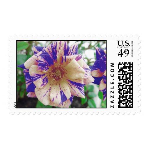 Garden Postage Stamps