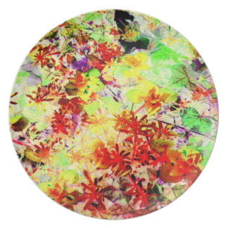 Garden Rainbow Glow Art Photo Wall Decor Gift Dinner Plate