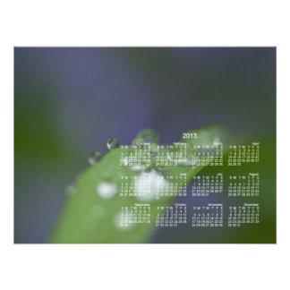 Garden Raindrops; 2013 Calendar Photo Print