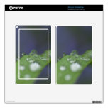 Garden Raindrops Kindle Fire Skin