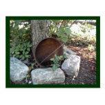 Garden Rustic Postcard