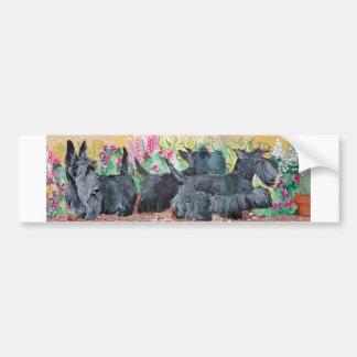 Garden Scottish Terriers Car Bumper Sticker