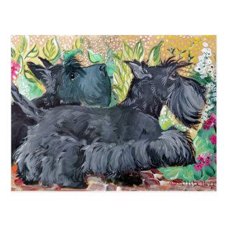 Garden Scottish Terriers Postcard