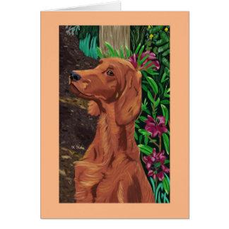 Garden Setter card 2