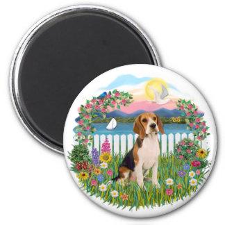 Garden-Shore - Beagle 2 Magnet