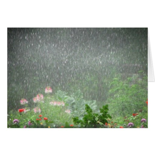 Garden Showers Card