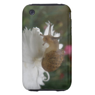 Garden Snail and White Carnation iPhone 3 Case