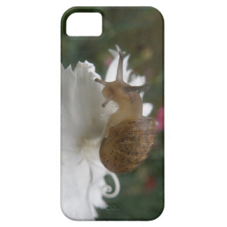 Garden Snail and White Carnation iPhone 5 Case