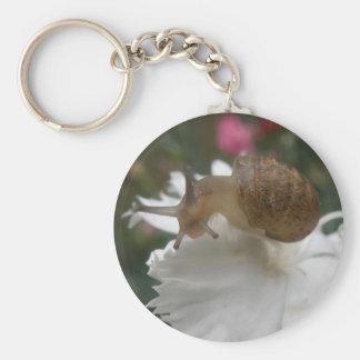 Garden Snail and White Carnation Keychain