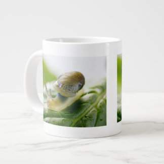 Garden snail on radish, California Giant Coffee Mug