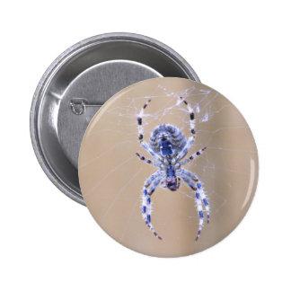 Garden Spider Button