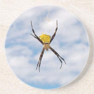 Garden Spider Sandstone Coaster