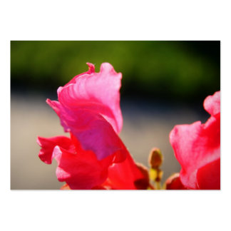 Garden Supply Business Card