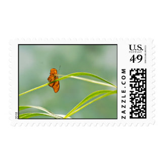 Garden Themed Stamp