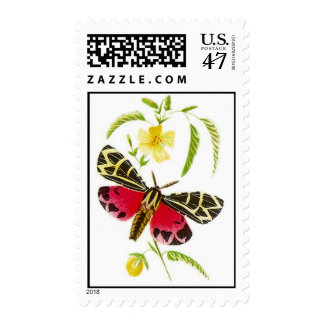 Garden Tiger Moth Lepidoptera Nature STAMP