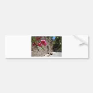 Garden Tomb Jeruselum Isreal Bumper Sticker