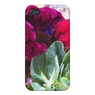 Garden Variety No. 17 iPhone 4 Cover