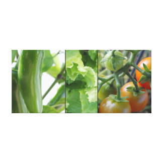 Garden vegetables - tomatoes, lettuce, jalapeno canvas print