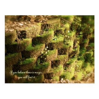 Garden Wall And Magic Inspiration Postcard