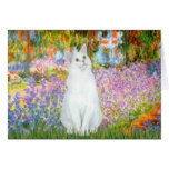 Garden - White cat Greeting Card