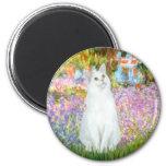 Garden - White cat Magnets