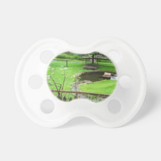 Garden with pond pacifier